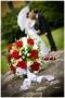 KoLa Fotó szentgotthárdi esküvői fotós