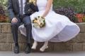 Csergő Fotó - zsurnalisztikus esküvőfotózás budapesti esküvői fotós