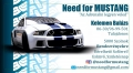 Need for Mustang - Élményautózás szolnoki autókölcsönző